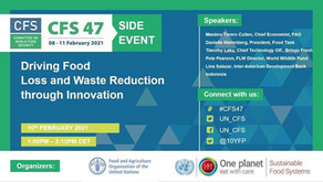 My presentation at the FAO Committee on World Food Security (CFS47) Side Event
