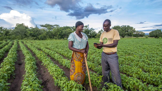 Digital tools can transform Africa, tackle food insecurity