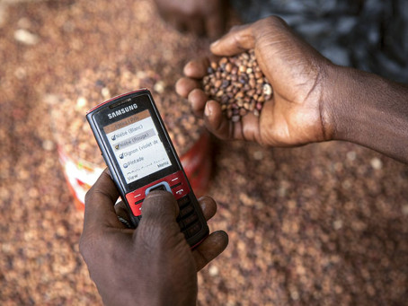How technology investment can revolutionize supply chains for smallholder farmers in Africa