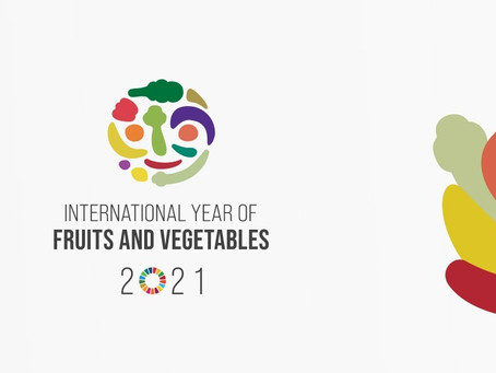My presentation at the UN Official Launch Event of the International Year of Fruits & Vegetables