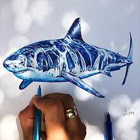 Great White Shark, Birobugs, Elise Wortley, shark art