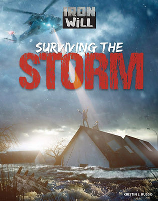 Surviving the Storm cover.jpg
