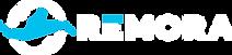 Horizontal Logo Transparent ( For Color