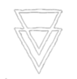 visavis-logo.png