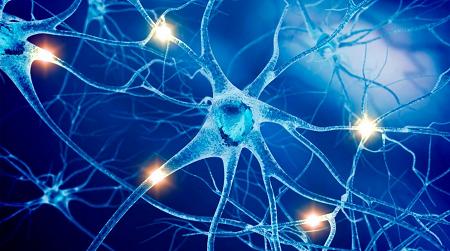 Reflexology and Multiple Sclerosis