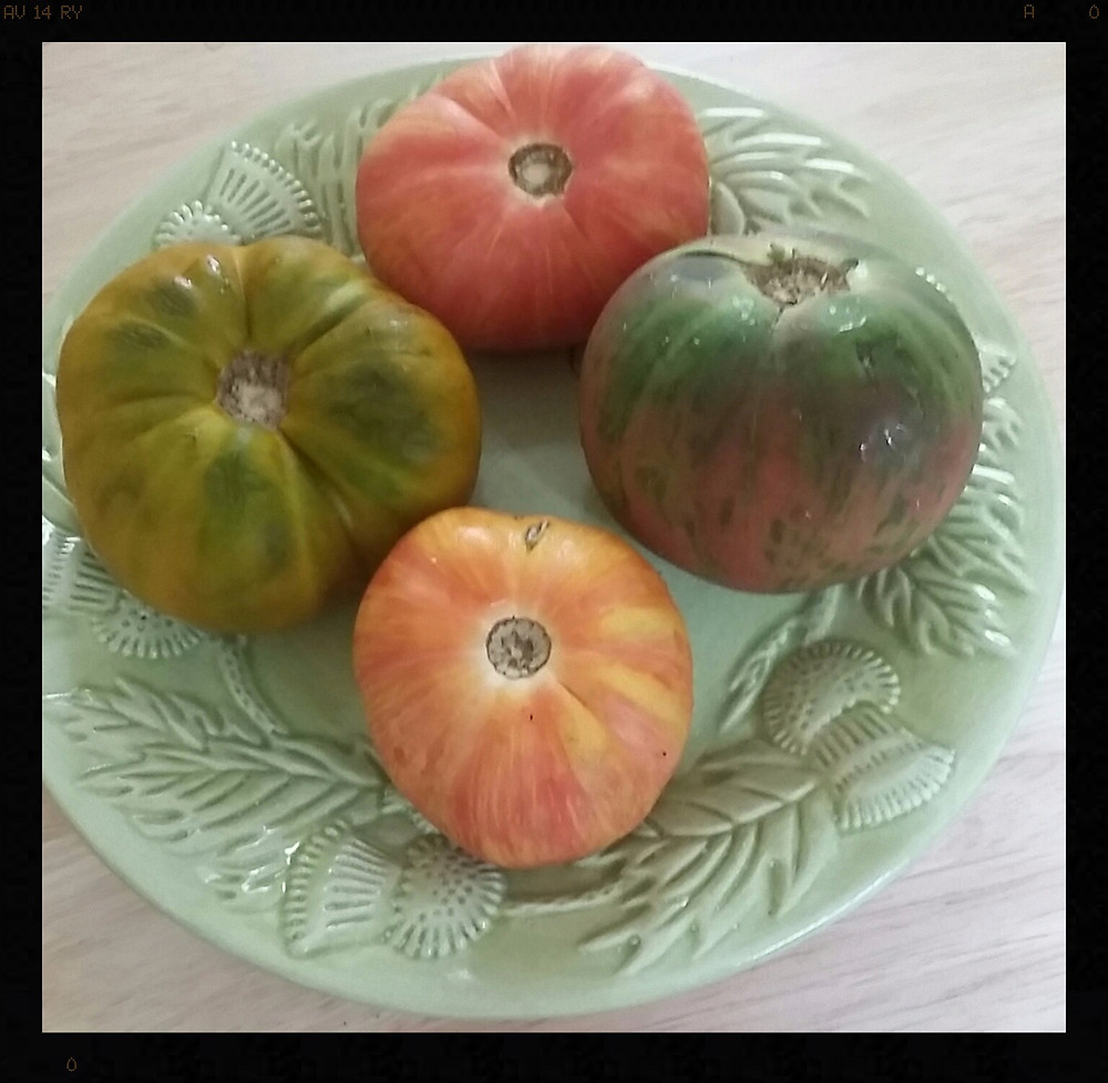 I love to enjoy the home grown taste of heirloom tomatoes from the local farmers' market.  Just a drizzle of  balsamic and EVOO, and  I'm good to go!