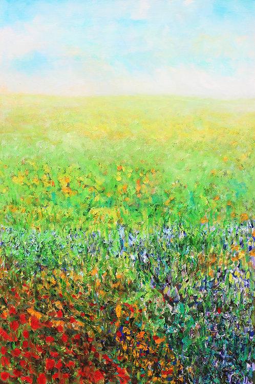 Textured Fields