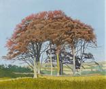 Annie Ovenden - Autumn at Wenworth