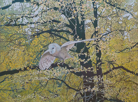 Annie Ovenden - Owl Amongst The Trees