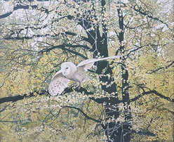 Annie Ovenden - Owl Amongst the Leaves