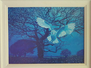 Annie Ovenden - Owl at Kurland