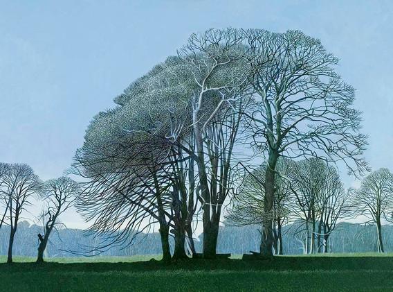 Annie Ovenden - Winter Beeches II