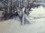 Annie Ovenden - Above St Neot