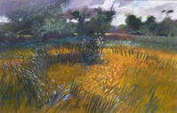 John Griffin - Yellowfield II