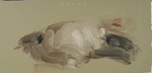 Donna Festa - Black Feathers (2016). Oil