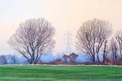 Annie Ovenden - Willows on Leyton Marsh