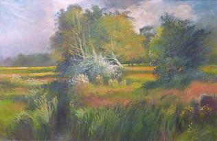 John Griffin - Redfield, Avon Backwater