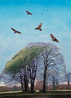 Annie Ovenden - Here Comes Summer