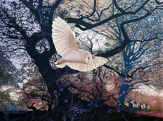 Annie Ovenden - Owl Near Lanhydrock