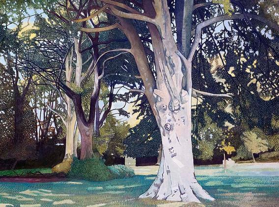 Annie Ovenden - Boconnoc  Deer Park
