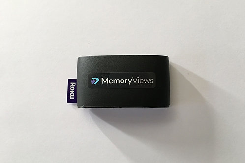 MemoryViews Plug n' Play Stick