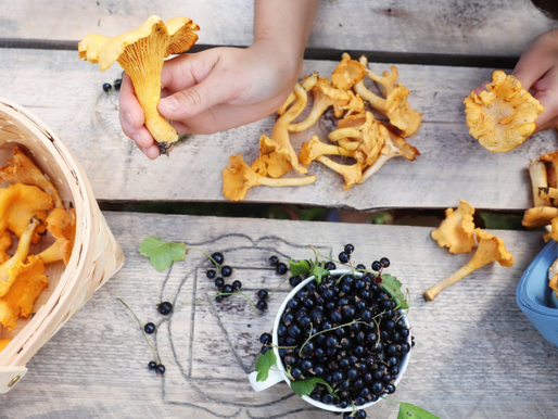 Sustainable, Simple & Creative : discover Finland's food culture