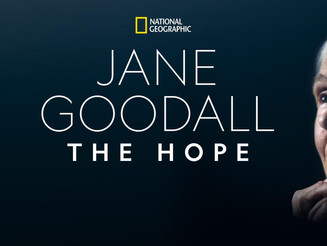 Jane Goodall: The Hope headlines National Geographic 'Earth Day' programming