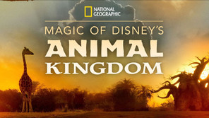 """MAGIC OF DISNEY'S ANIMAL KINGDOM"" Coming to Disney+"