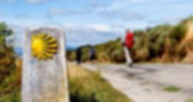 Camino-Portugues-Porto-to-Santiago-2-e15