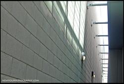 wall+4