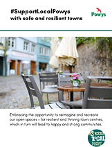 Transforming Towns leaflet. png Eng.png
