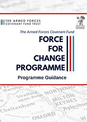Force for change Guidance.png