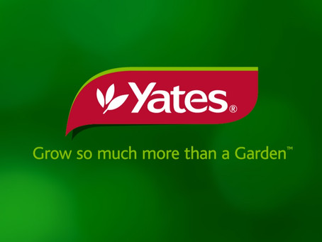 Yates Chooses OFS