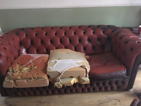My Dog destroyed the Chesterfield!!!