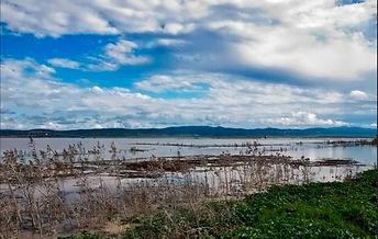 Laguna-de-La-Janda-en-Algeciras.jpeg