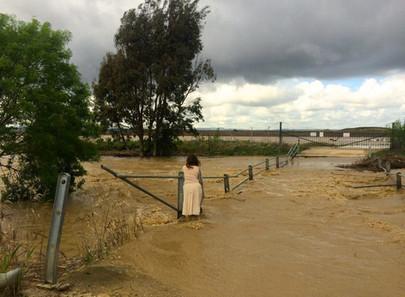 Laguna de la Janda is....wet