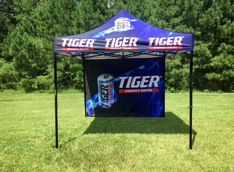 10x10-Web-Size-Tiger-Energy-004-gallery-