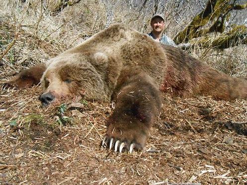 Kodiak Brown Bear Hunting Outfitter