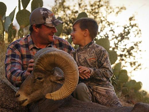 Apply for Desert Bighorn Sheep