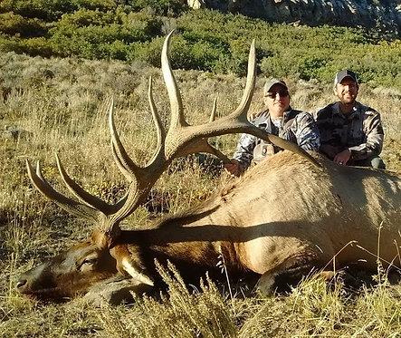 400 Inch Bull elk in Utah