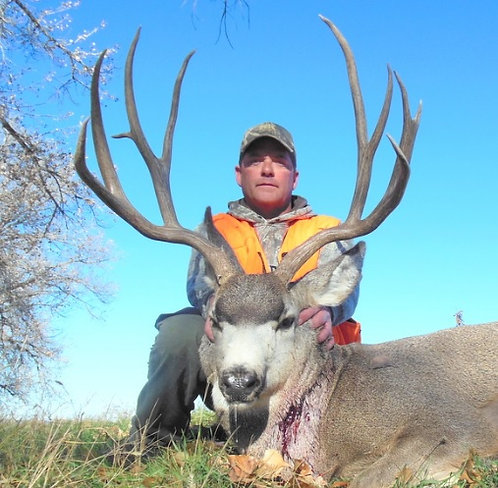 Montana Mule Deer Hunting Outfitter
