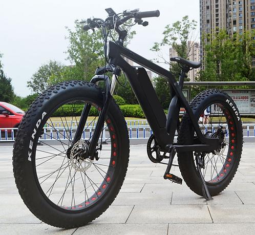 750W Hub Drive Fat Bike With Torque Sensor