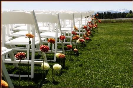 linden chairs catalyst.jpg