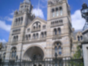 Natural_History_Museum_in_London_5-2013.