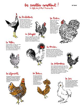 poules-epinal.png