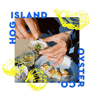 HogIsland_oysters_3.jpg