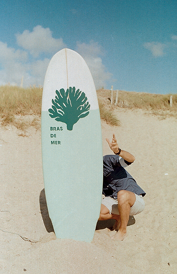 BDM_surf.png