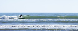 Surfing at Lyall bay