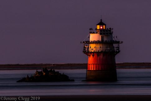 Lighted Birdhouse