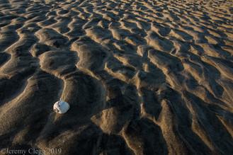 Shell Mounds